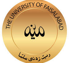The University of Faisalabad